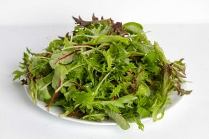Bulmer Farms Salad Mix