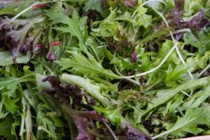 Bulmer Farms Baby Leaf Salad Mix
